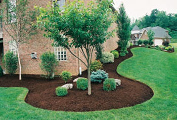Pay attention to landscaping and curb appeal