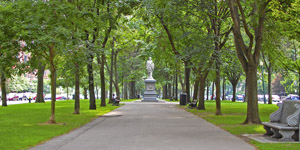 Commonwealth Avenue Mall